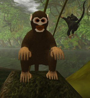 The Silly Wilderness Monkey