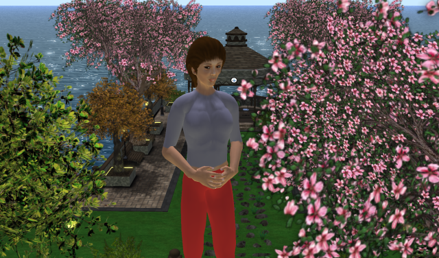 This is a beta avatar but I'm working on new look.