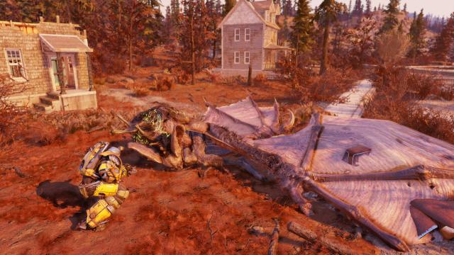 Yordie in Fallout 76